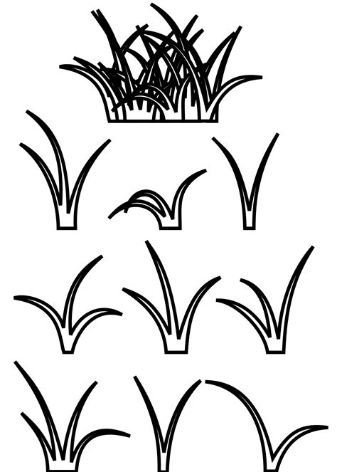 sea grass clipart black  white pencil   color