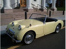 Mellow Yellow Bugeye Sprite for Sale