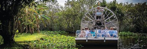 Glass Bottom Boat Tours Everglades by Go On An Everglades Airboat Adventure From Miami Floridatix