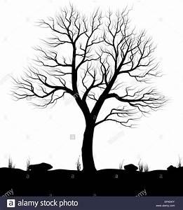 Bilder Schwarz Weiß Gemalt : landschaft mit alten baum und rasen auf wei em hintergrund schwarz wei vektor illustration ~ Eleganceandgraceweddings.com Haus und Dekorationen
