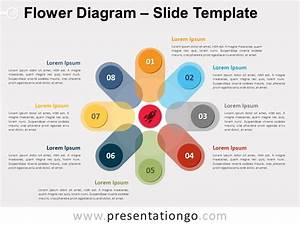 Flower Diagram For Powerpoint And Google Slides