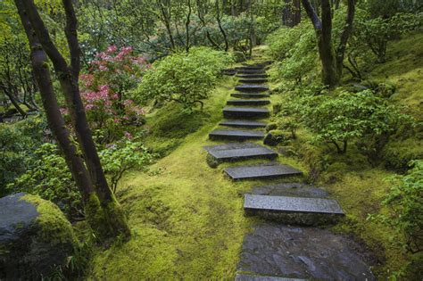 Japanischer Garten Moos by What S Japan S Moss Obsession Iflscience