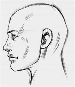 Side View Head Drawing