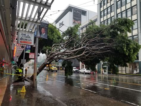 nasty storm battering bay area leads   deaths flooding