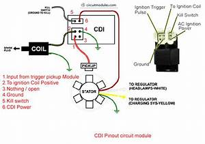 Image Result For Gy6 Cdi Wiring Diagram