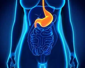 Gastroparesis  A Mysterious Stomach Disorder That U2019s On The