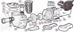 Hayward Tristar Pool Pump Parts