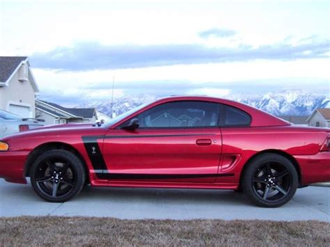 mustang  stripes rocky mountain graphics