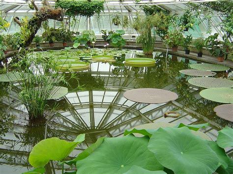 Berlin Gardens - file botanical garden berlin house flo jpg
