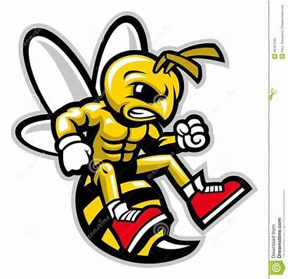 Vector Mascot Yellowjacket Illustrations Hornet Angry Cartoondealer