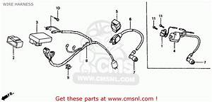Honda Xr80r 1985  F  Usa Wire Harness