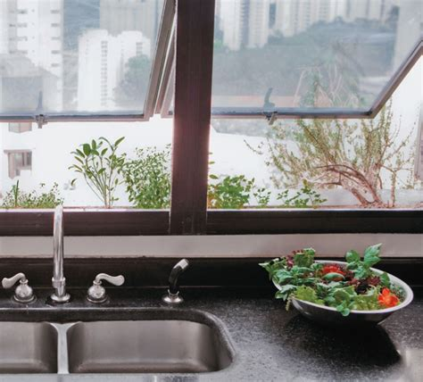 Window Sill Garden Vegetables by 100 Best Gardening Vegetables Images On