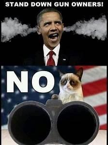 157 best Grumpy Cat images on Pinterest   Grumpy cat, Cats ...