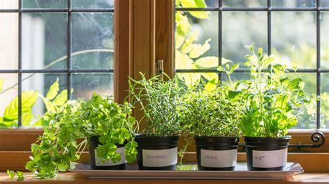 Herb Garden Indoor : Diy Indoor Herb Garden-start Your Own Today