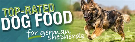 dog food   german shepherd