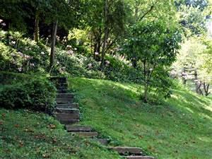Jardin En Pente Raide : pente plantes tout ~ Melissatoandfro.com Idées de Décoration