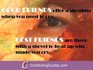 Funny Quotes About Best Friends Being There for You ...
