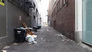 Design Maker Pigeons In Urban Alley Eating Stock Footage Video 100