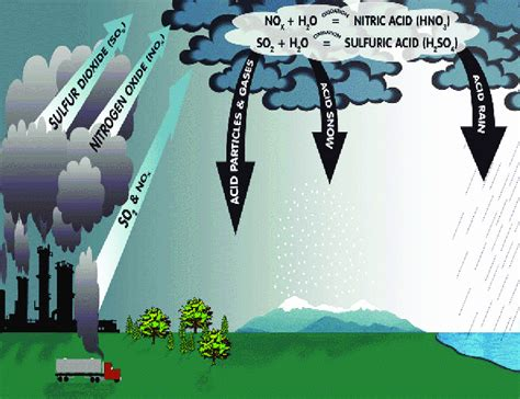 Formation Of Acid Rain From Air Pollutant Gases (source