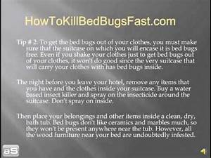 learn how to get the bed bugs out of your clothes quick With bed bugs out of clothes