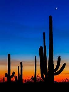 Tucson Sunset Photograph by Chris Austin