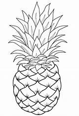 Pineapple Coloring Pages Fruit Printable Template Fruits Adult Line Mandala Sheets Drawing Cartoon Apple Drawings Ru Raskraska Pepper Simple Draw sketch template