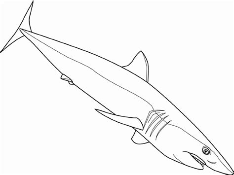 Coloring Shark by Shark Coloring Pages 12 Coloring
