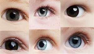 Yeux Verts Rares : l origine de la couleur de vos yeux ep 1 les yeux verts ~ Nature-et-papiers.com Idées de Décoration