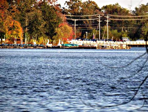 Paddle Boat Rentals New Jersey by Autumn In Lake Carasaljo In Lakewood New Jersey