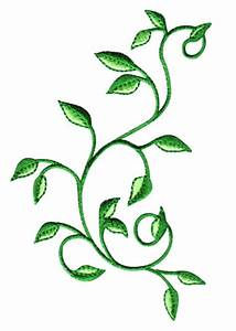 12 Vine Embroidery Designs Images - Flower Vine Embroidery ...