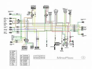 2001 Honda 400ex Electrical Diagram