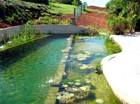 Swimming Pond : Diy By Pond With A Natural Self-cleaning Process