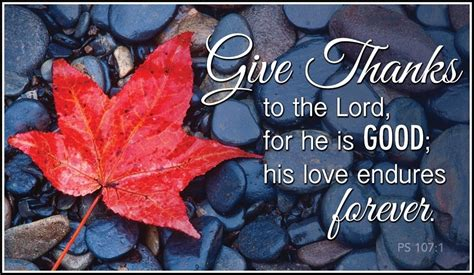 There is a specific approach to count down 28 days of thanks giving. 44 Thankful Quotes for Thanksgiving 2020   Prayer & Bible Verses