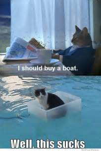 buy a cat cat finally buys a boat weknowmemes