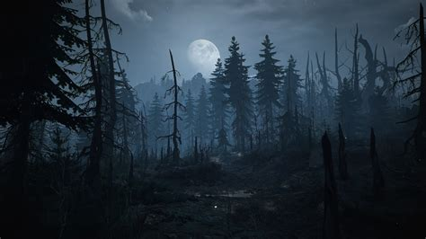 Witcher 3 Landscape Wallpaper The Witcher 3 Wild Hunt Skellige Wallpapers Hd Desktop And Mobile Backgrounds