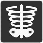 Ray Icon Bone Health Icons Xray Check