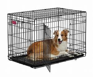 midwest lifestages double door dog crate ace model With ace dog kennels