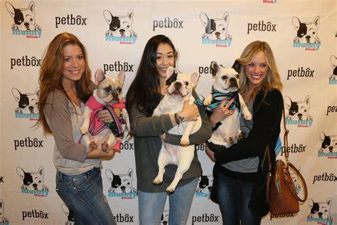 ways   paid  loving dogs iheartdogscom