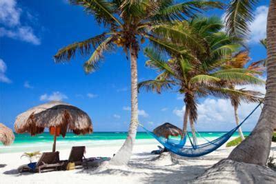 karibik der himmel auf erden unter palmen travelmynede