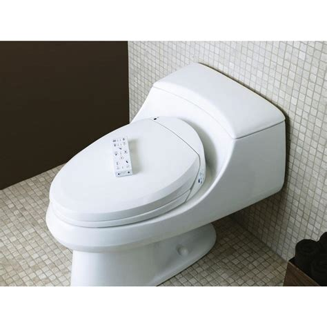 Combined Toilet And Bidet System by Bidet Toilet Combo Home Decor