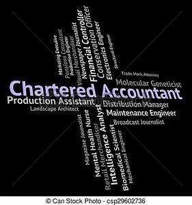 Tekeningen van controle, boekjes , accountant, gecharterd ...