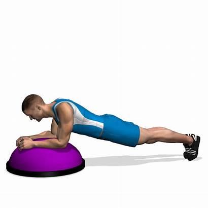 Rectus Abdominis Exercise Bosu Workout Workouts Area