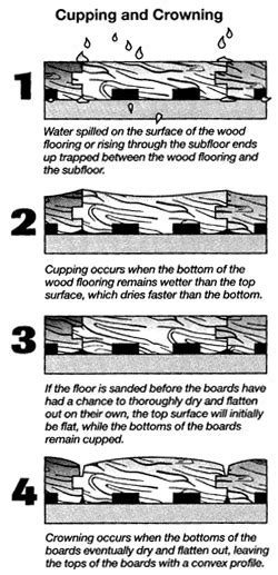 Four Steps to Protect Your Hardwood from Humidity