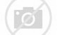 Conrad Willems: Domus studio visit with the belgian artist ...