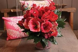 Amaryllis In Der Vase : der rintelner winterwunder amaryllis arrangements ~ Lizthompson.info Haus und Dekorationen