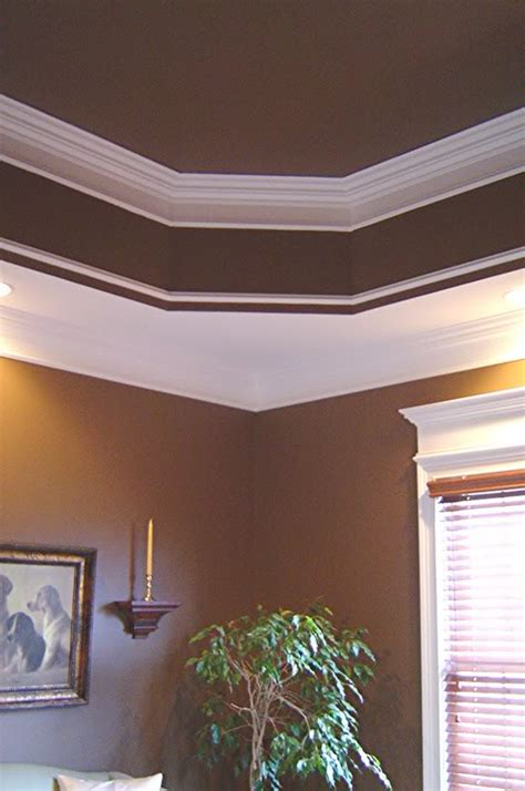 Painting Tray Ceiling Ideas Pictures by Tray Ceiling Paint Ideas Tray Ceiling Paint Ideas Euqq