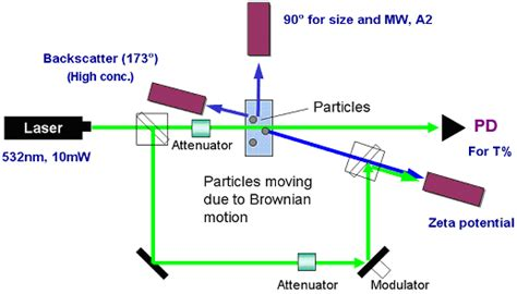 dynamic light scattering nanoparticle size zeta potential and molecular weight