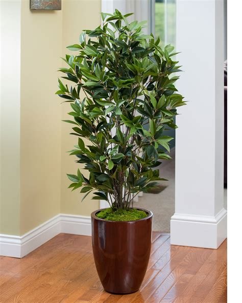 Decorate Home And Office With 4' Faux Olive Bush At Petals