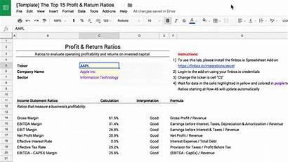 Profit Return Ebitda Ratios Spreadsheet Valuation Investor