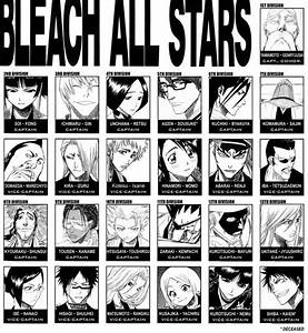 The Bleach Captains and Lieutenants from all 13 Divisions ...